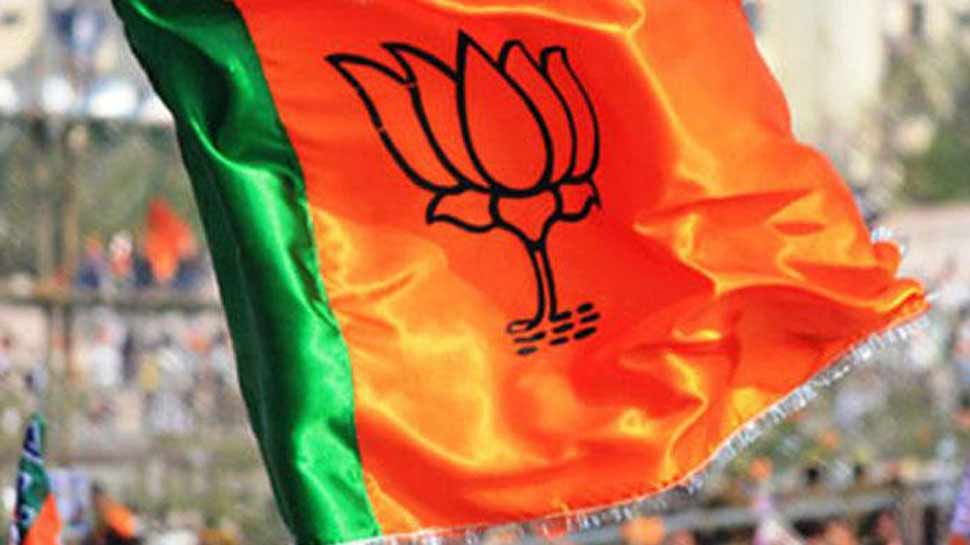 ബിജെപി 4 ജില്ലകളില് അധ്യക്ഷന്മാരായില്ല!