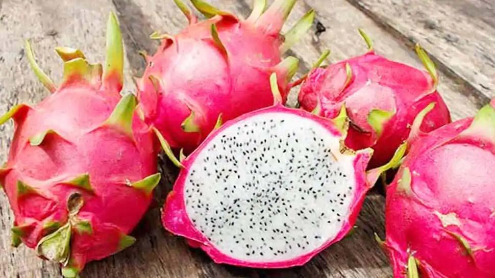 Dragon Fruit ഇനി 'കമലം' എന്ന പേരിൽ അറിയപ്പെടും