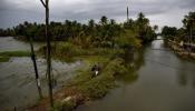 Kuttanad Waterlevel: ജലനിരപ്പ് കുറയുന്നു, ജാഗ്രത തുടർന്ന് കുട്ടനാട് അപ്പർ കുട്ടനാട് മേഖല