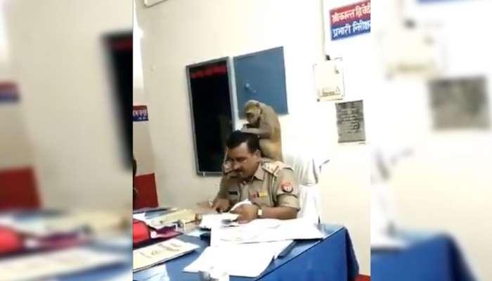 Viral Video:... പൊലീസ് ഇന്സ്പെക്ടറുടെ തോളിലിരുന്ന് പേന് നോക്കുന്ന കുരങ്ങന്!!